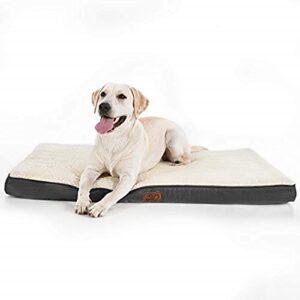 La Comparación De Colchon Perro Grande Para No Confundirte Al Comprar. Mejor Tienda Online